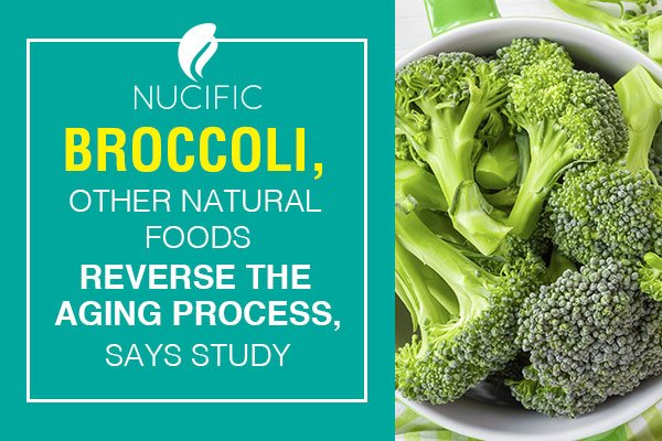 [NEWS] Broccoli Reverses Aging Process, Says New Study