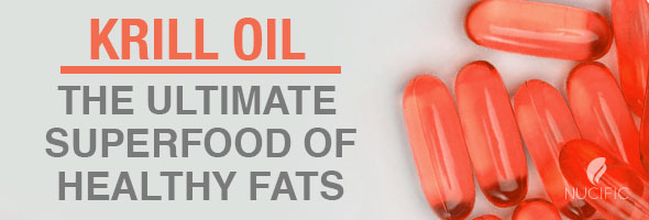 Krill Oil – The Ultimate Superfood of Healthy Fats