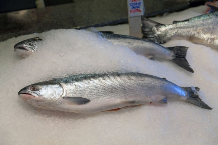 Are You Buying Toxic Fish? How to Decipher Fish Labels