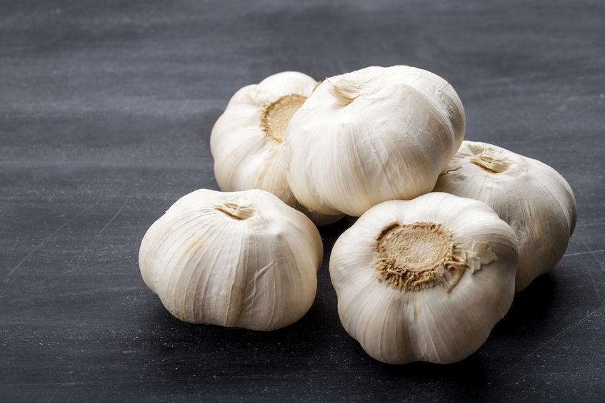 garlic | Nucific