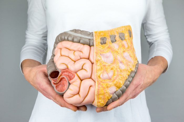 The Great Truth About Colon Cleanses (pros and cons to know)