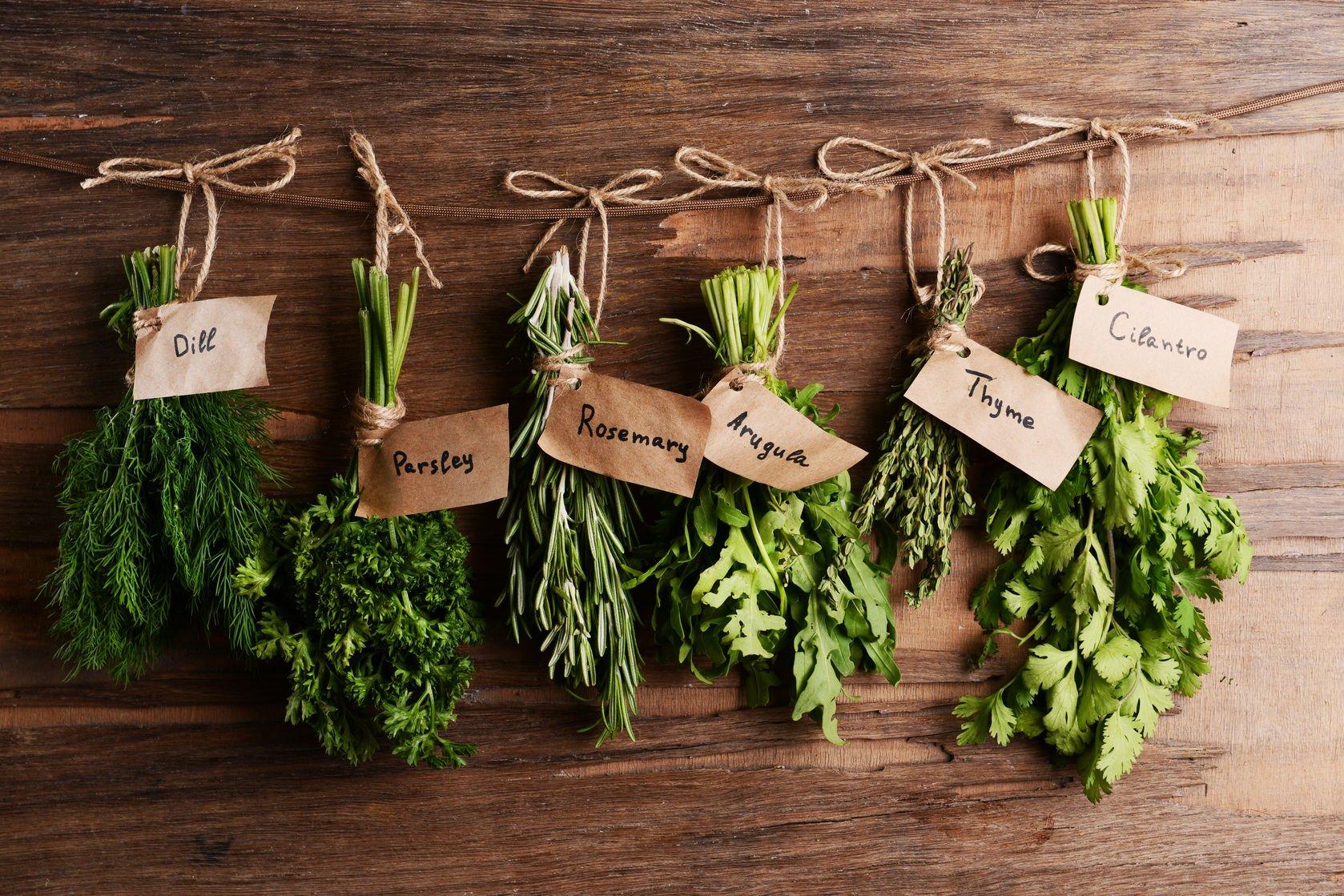 best healthy foods | Nucific
