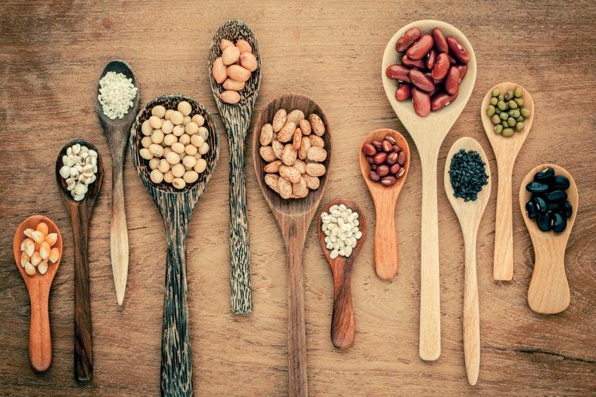 Indian Cuisine | Nucific