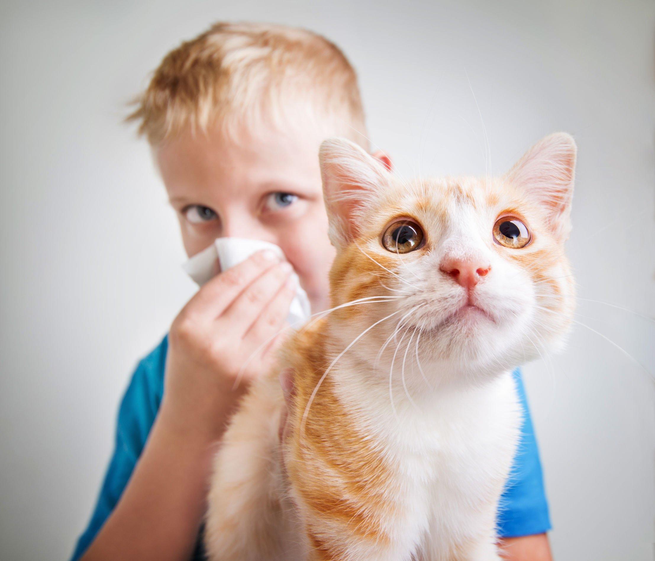 Pet Allergies | Nucific