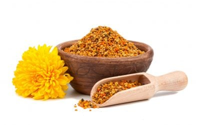 Bee Pollen Benefits – For a Healthy Mind and Body