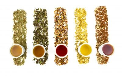 White Tea vs. Black Tea – Essential Comparisons