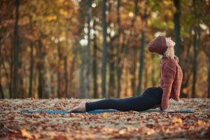 fall fitness   Nucific