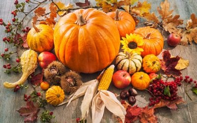Healthy Fall Produce List: Seasonal Fruits And Vegetables