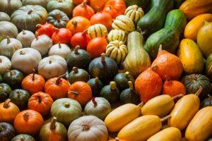 fall produce | Nucific