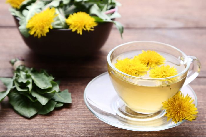 How To Make Dandelion Tea And Health Benefits Of The Dandelion Plant