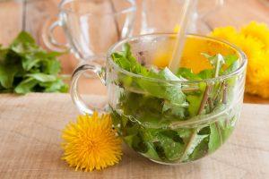 dandelion leaf tea | Nucific
