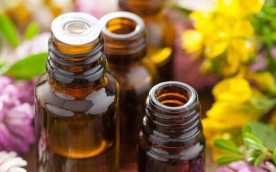 Essential Oils For Home: What Are The Benefits?