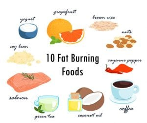 fat burning food | Nucific