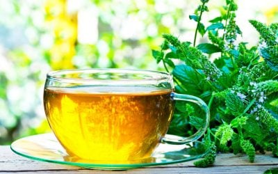 Amazing Peppermint Tea Benefits: The Drink With Countless Health Benefits