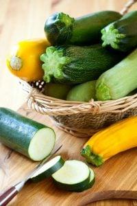 zucchini   Nucific